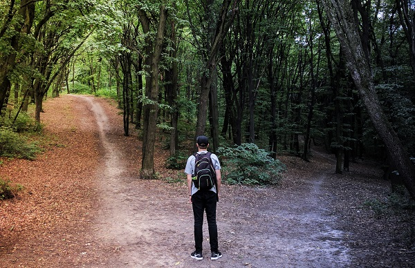 Person stands in woods, deciding which path to take